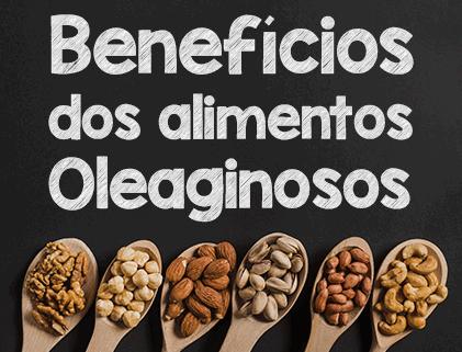 O que são alimentos oleaginosos e o que ela oferece?